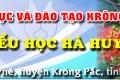 Trường TH Hà Huy Tập Tham gia tập huấn cổng thông tin điện tử